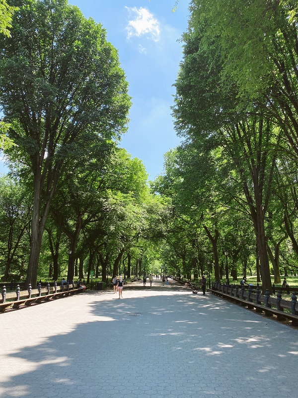 The Mall en Central Park