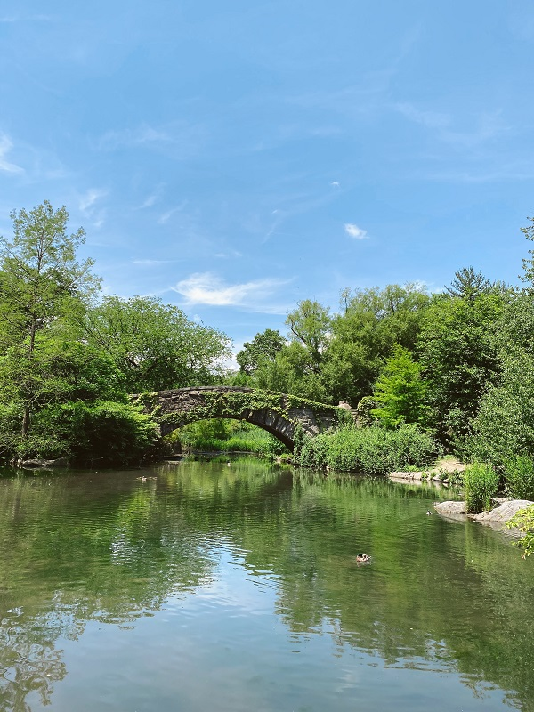 Gaspow Bridge en Central Park