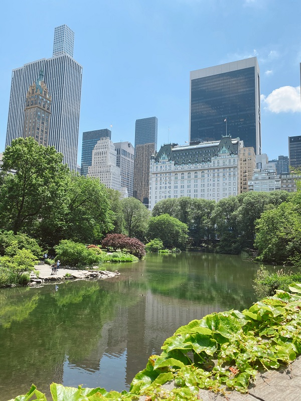 Gaspow Bridge and The Pond in Central Park
