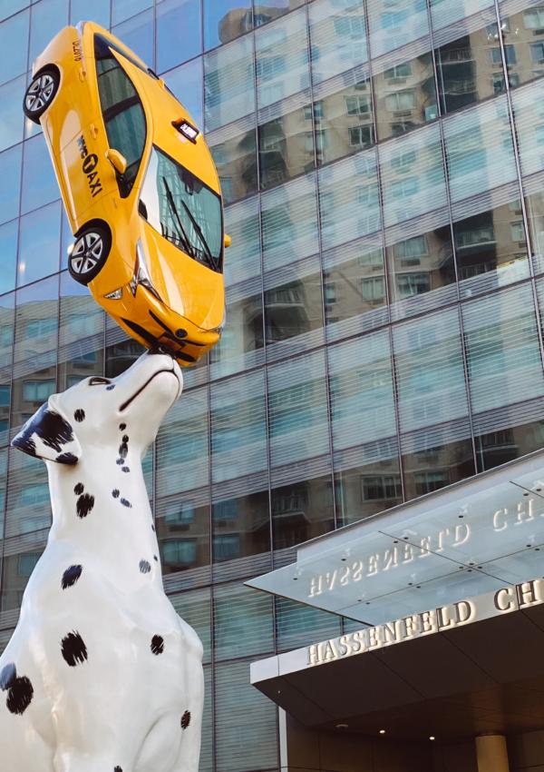 El dálmata que sostiene un taxi neoyorquino
