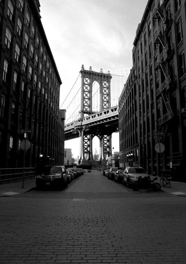Nueva York está muerta